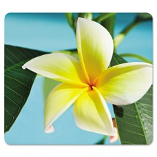 Recycled Mouse Pad, Nonskid Base, 7 1/2 X 9, Yellow Flowers