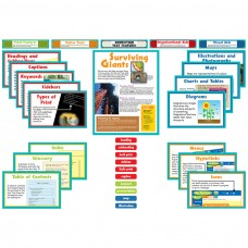 Nonfiction Text Features Bbs 15ct