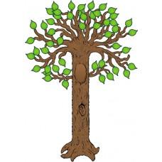 Bb Set Big Tree