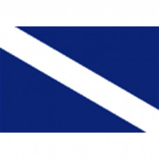"20"" X 30"" Nyl Guest O/D Flag"